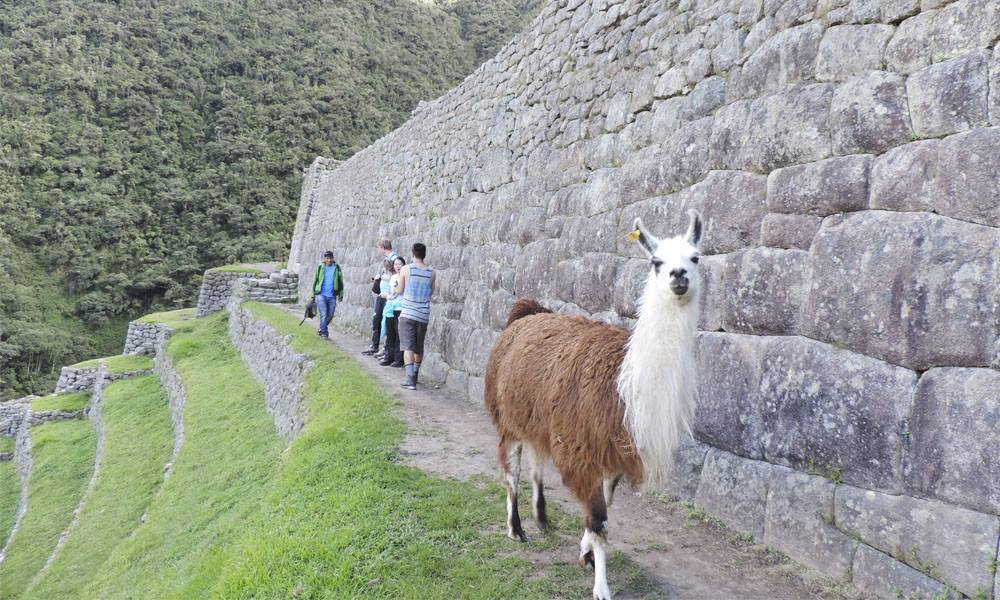 inca trail to machu picchu seven days tour package