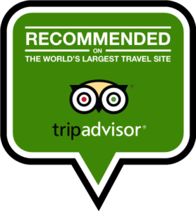Recommend tripadvisor